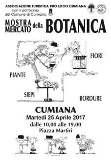 Fiera botanica cumiana 2017 (1)